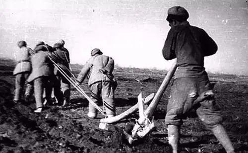 """疫情新闻里总提到的""""新疆生产建设兵团"""",究竟是个什么庞然大物?图文-21"""
