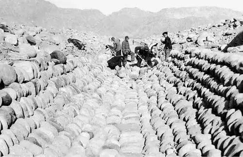 """疫情新闻里总提到的""""新疆生产建设兵团"""",究竟是个什么庞然大物?图文-24"""