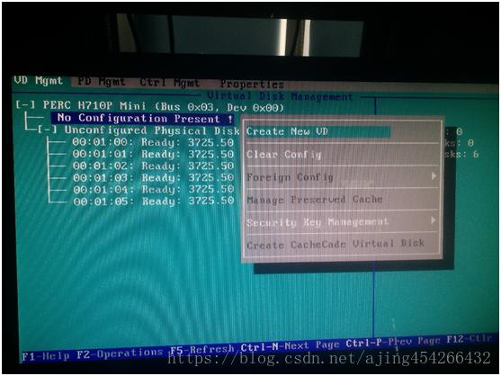 DELL R720 配置RAID及安装系统-4