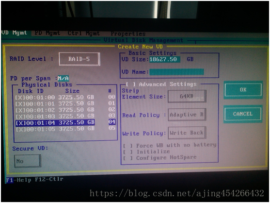 DELL R720 配置RAID及安装系统-6