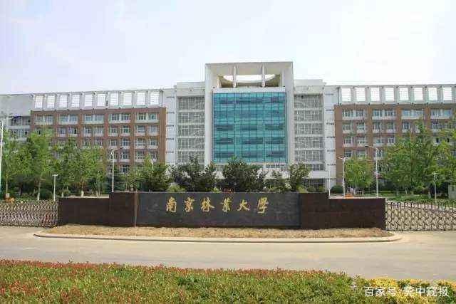 中国拆分最厉害的大学:拆分出5所985大学,7所211大学-17
