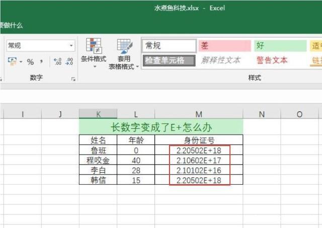 Excel输入身份证号后变成E+乱码怎么办-2