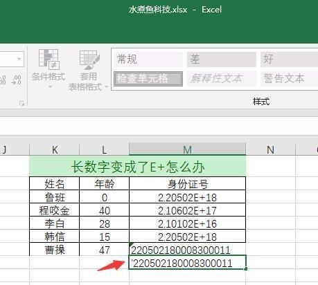 Excel输入身份证号后变成E+乱码怎么办-5