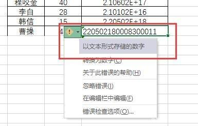 Excel输入身份证号后变成E+乱码怎么办-6